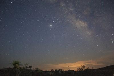 ペルセウス流星群を見にジョシュアツリー国立公園のコットンウッド地区へ