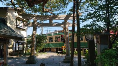 夏期休暇の週末に、鎌倉の海浜公園、長谷を観光。海と境内最高♪ ι(´Д`υ)アツィー
