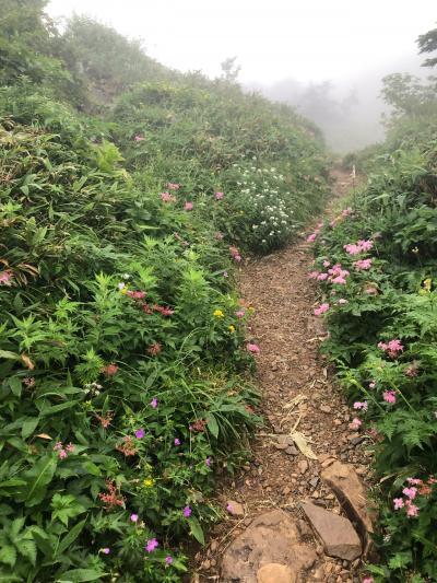 花の楽園!百名山、白山に日帰り登山。前泊白山温泉②