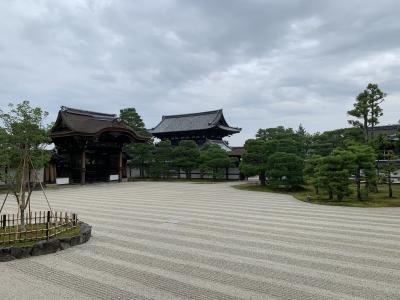 仁和寺で僧侶の案内するプライベートツアー&VR参加&ちょこっと金閣寺