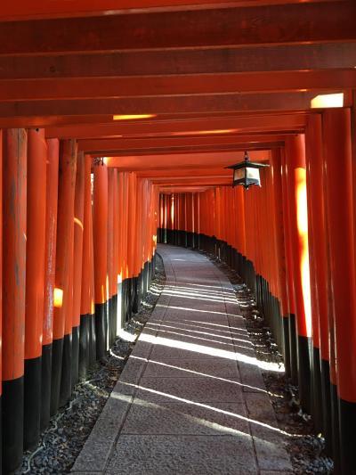 JRの「そうだ!京都に行こう!」のCMでも使われた、赤い鳥居が続く道、伏見稲荷に行って見た!