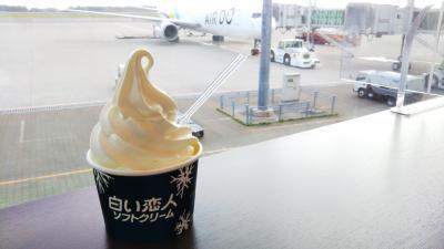 函館空港→羽田空港/AIR DO☆
