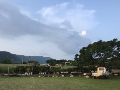 石垣島・開拓の集落明石「月桃の宿あかいし」滞在記とバスで島回りおまけ1泊2日編