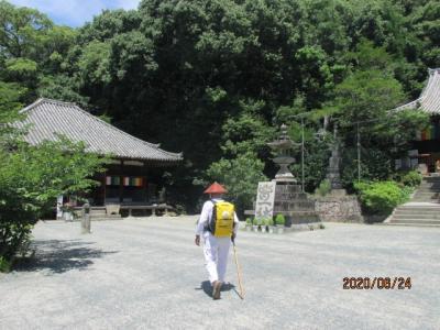 愛媛(伊予一国)ドライブ巡礼(45)石手寺に参拝し、棕櫚のコケ落としを買って下山する。