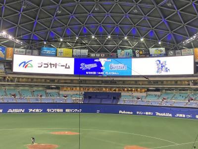 生ビールとナゴヤドームの新しい野球観戦様式横浜ベイ戦観戦