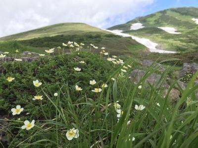 梅雨明けまだか?それでも行く東北行脚 鳥海山リベンジと森吉山