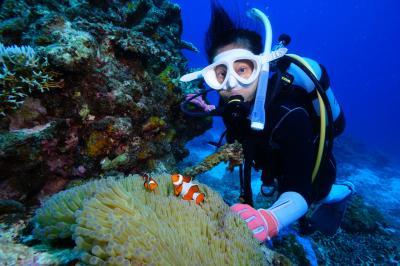 生きているサンゴの八重干瀬で潜る、素敵なダイビングショップで快適 宮古島2日目