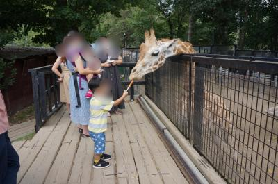 *20'8月末。3歳子連れ札幌旅行記①~定山渓温泉ミリオーネ泊と触れ合い型動物園「ノースサファリ」へ♪