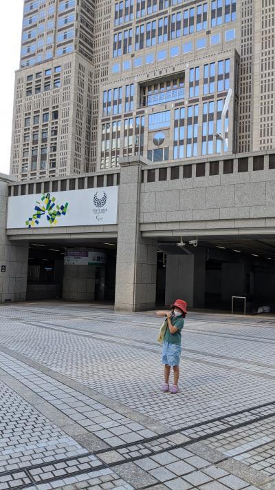 プチプチ旅 東京都庁展望台の様子を見に