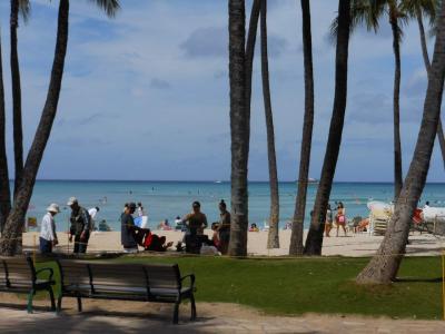 ハワイ 初めての出会い ホノルルに行ったら会っちゃった~💕