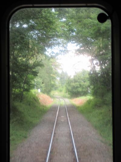 緑のトンネルを抜けて小淵沢へ 2020