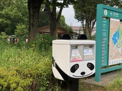 「特別な夏」の上野公園