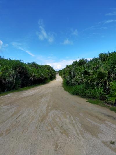 どこかにマイル12回目は夫婦で沖縄  2日目 神の島・久高島散策編