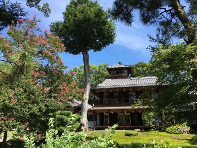 真夏の日帰り一人旅の京都2・鴨川デルタと旧三井家下鴨別邸(和菓子と冷茶体験も)