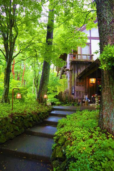 山梨凄いじゃん!美しい水に、充実の水族館に、オシャレなカフェに、富士山に!!癒され充実ドライブ旅行♪♪