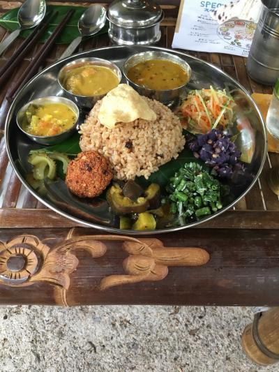 石垣島 魅惑の南インド料理と憧れのヒトシ