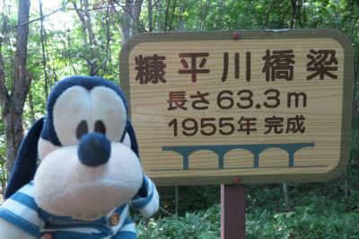 グーちゃん、「GO TO」で、帯広へ行く!(朝のお散歩、糠平川橋梁!編)