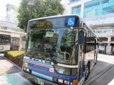 箱根でのんびり(1)箱根登山バスは観光アトラクション!