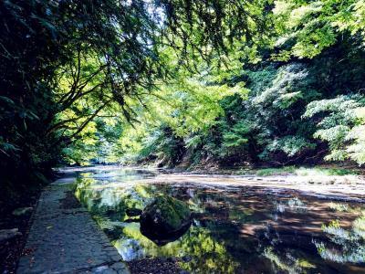 1泊2日 南房総でリゾート気分 2日目は粟又の滝で滝巡りハイキング