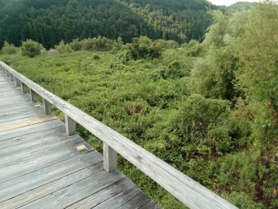 蓬莱橋と大井川川越遺跡