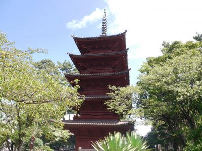 中山法華経寺☆道の駅いちかわ  トラットリア・アルポンテ☆2020/08/28