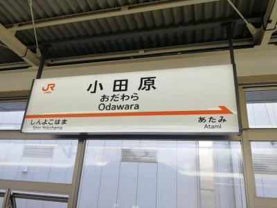 【ぷらっと旅1】ひさびさな新幹線!