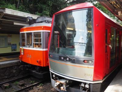 復旧した箱根登山鉄道を乗りに行く(トコトコきっぷ)