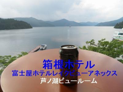 箱根でのんびり(2)芦ノ湖ビューの箱根ホテル(富士屋ホテルレイクビューアネックス)