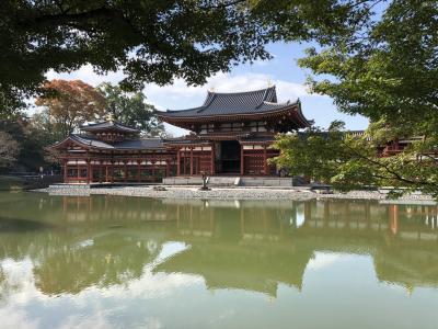 京都で1泊(平等院)