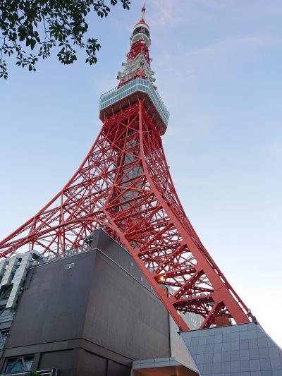 東京タワー外階段で、上りました。