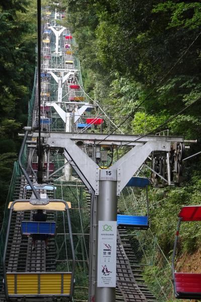 (22)高尾山健康登山 21度の満行達成 リフトー3号路ー山頂ー薬王院ーケーブルカー