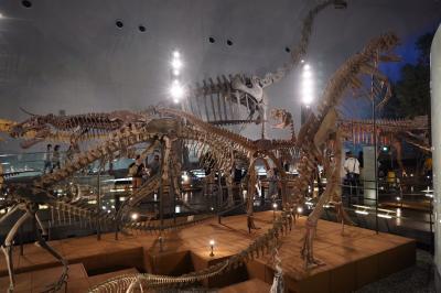 20200902-2 勝山 恐竜博物館。知らんかった事色々。