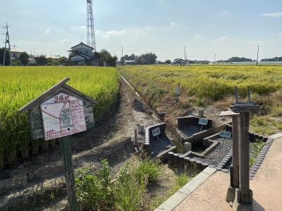 2020年8月 三県境&渡良瀬遊水地
