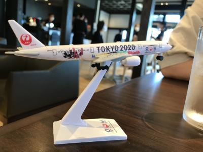 飛行機いらずのフライト体験(その1:利根川を2回渡って新たな成田へのルート)