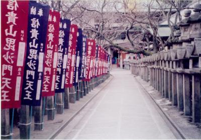 1998.12 高安山・信貴山