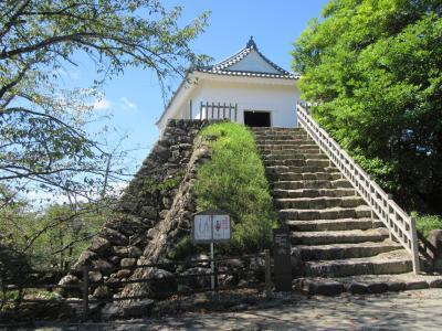 城郭訪問記 亀山城