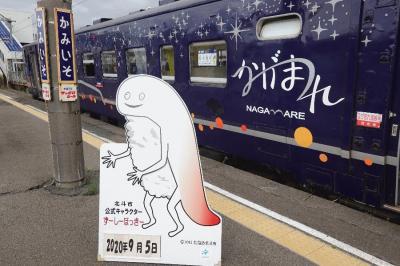 【大人鐡11】道南いさりび鉄道「ながまれ海峡号」編
