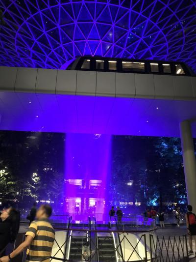 弾丸シンガポール2019.5 part 3 深夜の空港・帰国