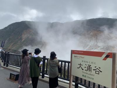 2020年8月 家族旅行 1泊2日  箱根 はなをり go to