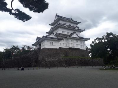 お城巡り 江戸城と小田原城