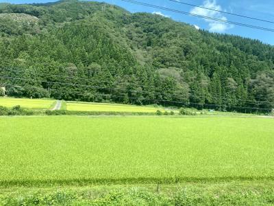 154日ぶりの鉄道旅で福井駅へ。