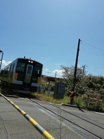千葉県内フリーきっぷで行くローカル鉄道ひとり旅