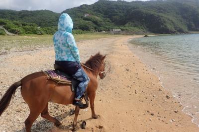 与那国島の南牧場のヨナグニ馬たち。②