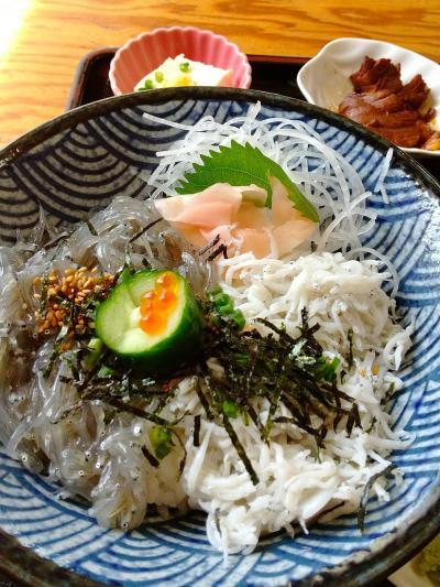 千葉県飯岡刑部岬と生シラス丼を食べに。