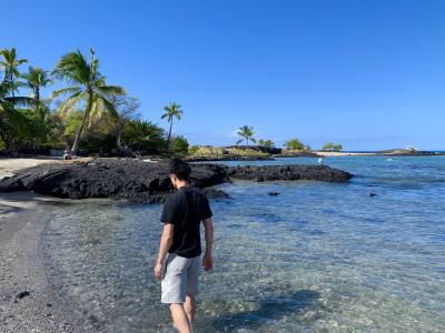 ハネムーン★7泊9日◆ハワイ島&マウイ島★⑤日目  ハワイ島~マウイ島へ移動からのシュノーケル