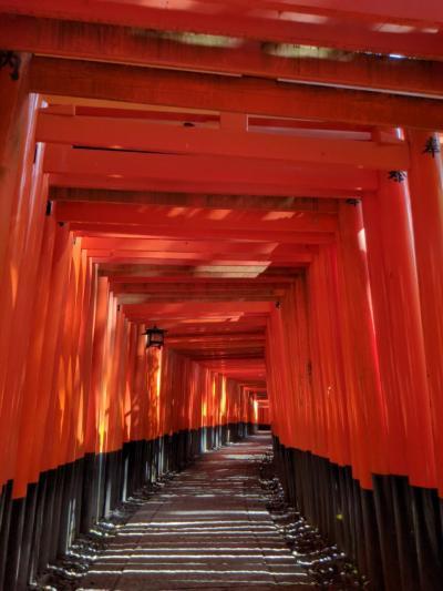 政変の週末、go  toの旅、そうだ!京都と言えば伏見稲荷へ行こう!