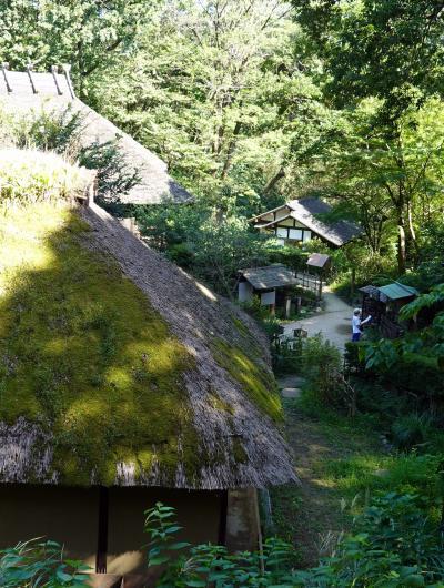 日本民家園訪問
