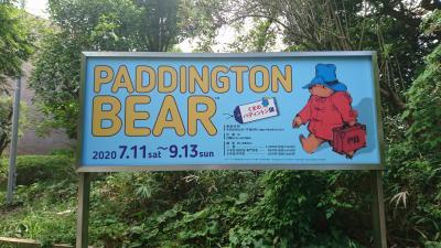 【Day out w/ N】公共交通機関を避けて、Paddington Bear展を見てきましょう!
