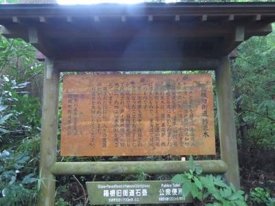 心の安らぎ旅行 2020年9月 箱根旅行Part6 箱根町の杉街道散策♪1日目☆