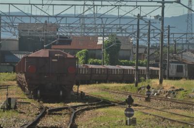 美濃赤坂で赤ホキを撮って来ました。2020年9月